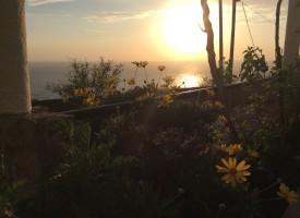 Zalazak sunca uz more i cvijeće