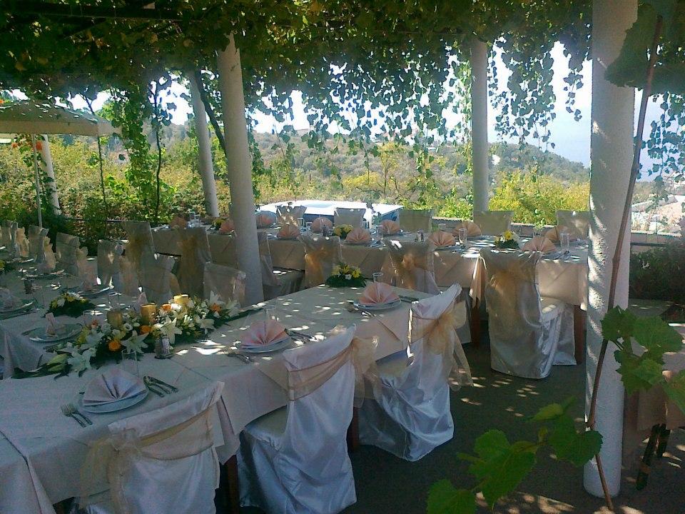 Vjenčanje u bašti
